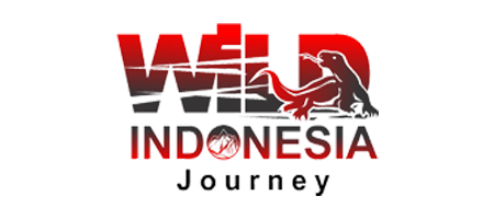 Wild Indonesia Journey